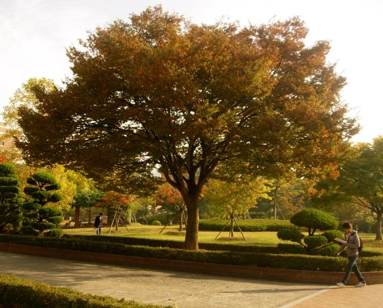 Keimyung University