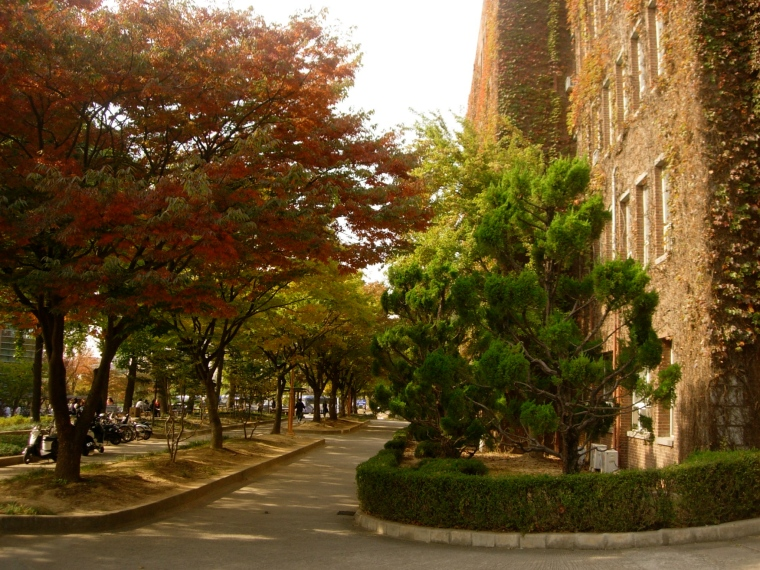 Path to Yougam Gwan - Keimyung University