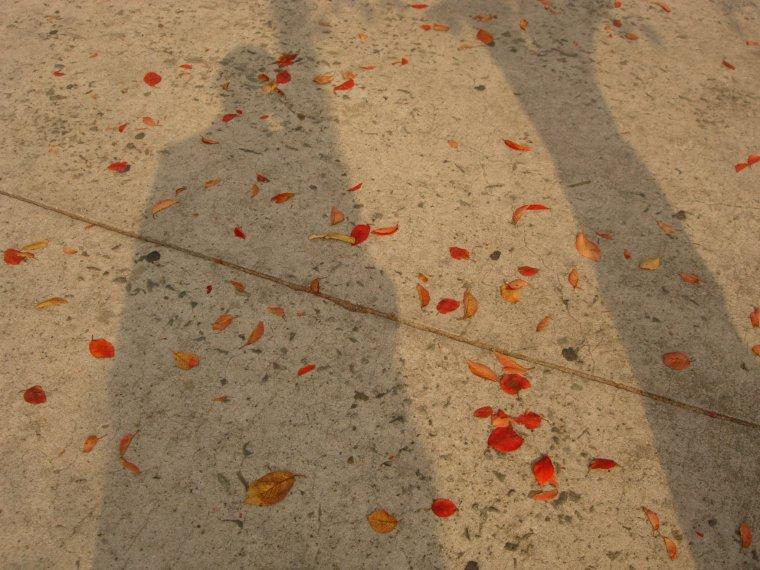 Me & Tree Shadowed