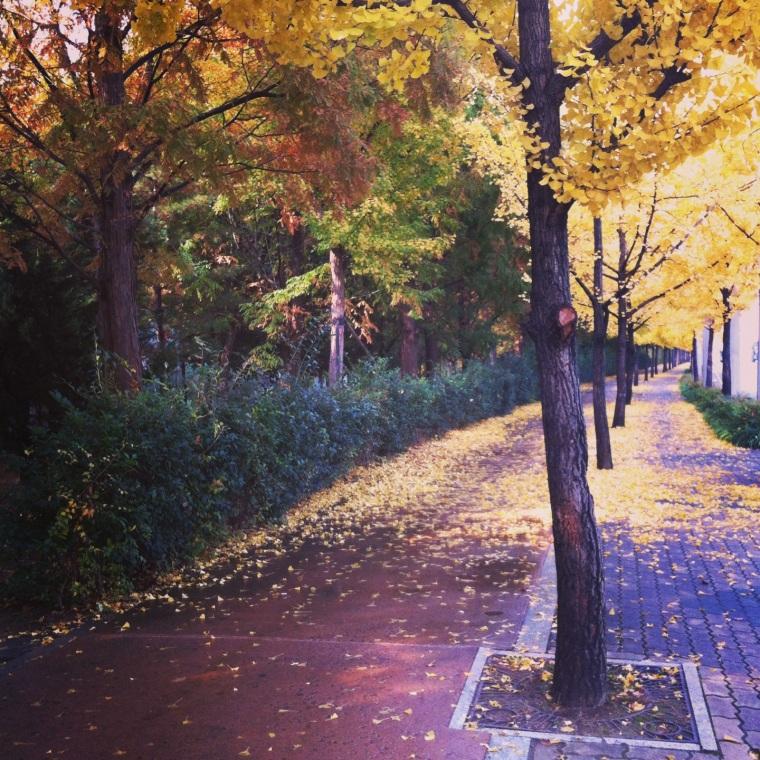 walking down the sidewalk